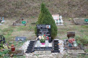 cmentarz dla psa